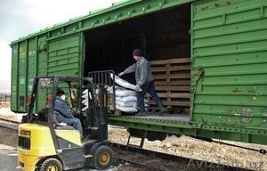 Перевозки импортно-экспортных грузов UZ-EU-UZ - Изображение #4, Объявление #1447444